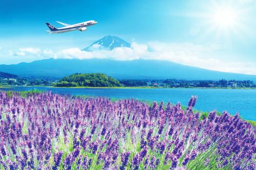 Hãng hàng không All Nippon Airways (ANA) mở chương trình khuyến mại giá sốc chỉ từ 8,725 triệu đồng.