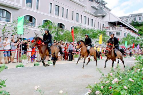 Lý do du khách yêu thích giải đua ngựa tại Fansipan - ảnh 3