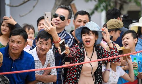 Lý do du khách yêu thích giải đua ngựa tại Fansipan - ảnh 2