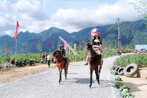 Lý do du khách yêu thích giải đua ngựa tại Fansipan - ảnh 6