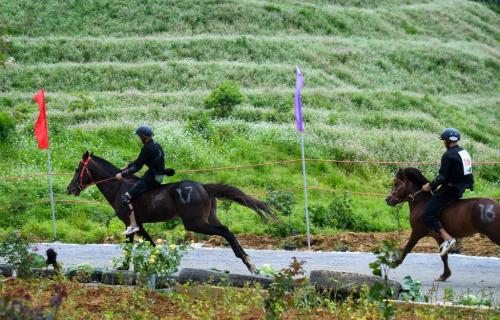 Lý do du khách yêu thích giải đua ngựa tại Fansipan - ảnh 7