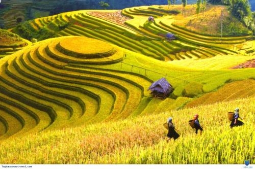 Trải nghiệm ẩm thực và văn hóa vùng cao tại Pao Quán 2- Hà Trì diễn ra vào lúc 18h30 từ 28/30/6.