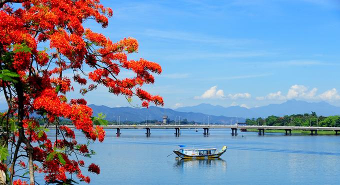 Phượng khoe sắc đỏ bên dòng sông Hương - VnExpress Du lịch