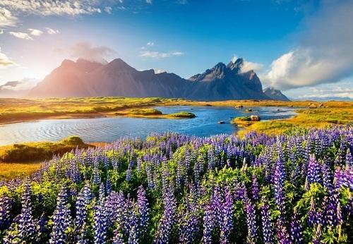 Khí hậu của Iceland ôn hòa với bốn mùa xuân, hạ, thu, đông. Ảnh: Road Affair.