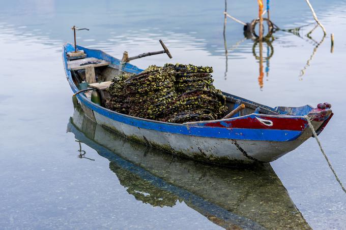 Vẻ đẹp của đầm Lập An bên bờ vịnh Lăng Cô