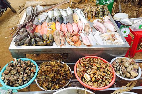 Một số món đặc sản khác nữa trong bộ sưu tập đặc sản biển Lý Sơn còn có: hàu son đu đủ, mắm cá giò nhí, chả cá Lý Sơn, rượu vú (hải sâm) Lý Sơn... và các món hải sản tươi ngon bạn có thể mua trực tiếp tại chợ rồi nhờ người dân chế biến. Ảnh: Tâm Linh.