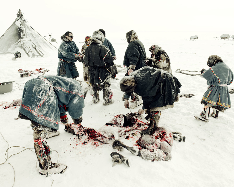 Bộ tộc chăn tuần lộc trên lãnh nguyên Siberia