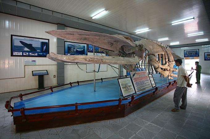Bảo tàng gần 100 tuổi về thế giới đại dương ở Nha Trang