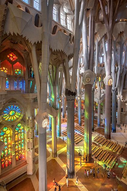 những cột cao trông như cành cây hướng lên trần nhà thờ.