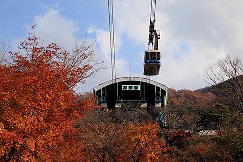 Để đi cáp treo du khách phải vào trạm Kogen Beppu nằm tại chân núi Tsurumi. Giá vékhứ hồi cho một người là1.600 yên (tương đương 345.000 đồng). Du khách có nhu cầu trải nghiệm việc leo núi cũng có thể mua vé mộtchiều với giá 1.000 yên (tương đương 216.000 đồng). Du khách cần lưu ý không đến trạm vào những ngày gió mạnh.Ảnh: Matcha.