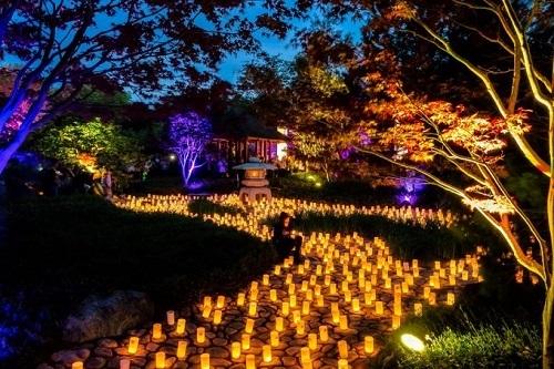 Lễ hội hoa đăng Nara được tổ chức hằng năm cũng là một nét văn hóa đặc trưng tại cố đô. Lễ hội tái hiện lại truyền thống viếng mộ tổ tiên, thắp đèn lồng trên bàn thờ gia đình để đón linh hồn tổ tiên về thăm vào dịp lễ Obon, lột tả rõ ràng nhất về văn hóa cũng như phong tục tập quán của người Nhật.