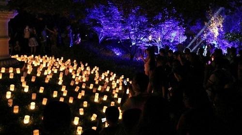 Bắt đầu từ năm 1999, lễ hội hoa đăng Nara chính thức được tổ chức. Trong lễ hội, 20.000 ngọn nến sẽ được thắp sáng xuyên suốt 10 ngày cho đến lễ Obon. Các địa điểm được thắp sáng bởi ánh nến là chùa Todaiji, đền Kasuga Taisha và công viên Nara.