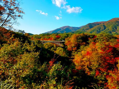 Tohoku - địa danh ngắm lá đỏ khi Nhật Bản vào thu - ảnh 1