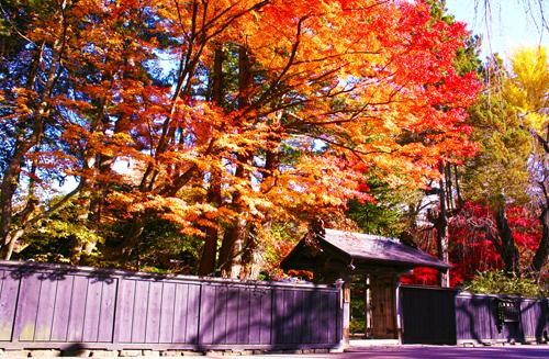 Tohoku - địa danh ngắm lá đỏ khi Nhật Bản vào thu - ảnh 2