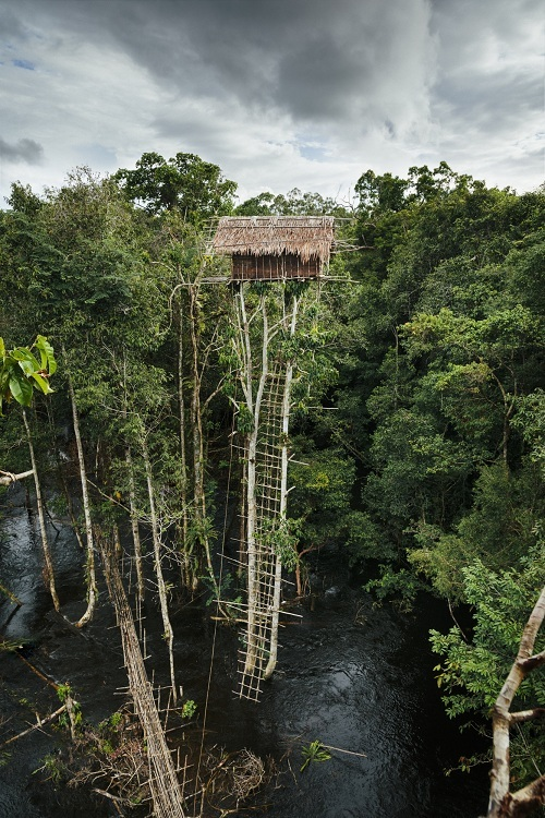 Bộ tộc săn bắn, hái lượm như thời nguyên thủy trong rừng Indonesia