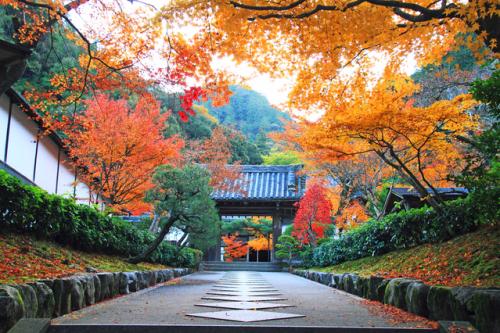 Chùa Nanzen-ji.e. Ảnh: Photolibrary.