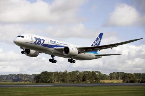 All Nippon Airways ưu đãi cho khách hàng mua vé máy bay - ảnh 1