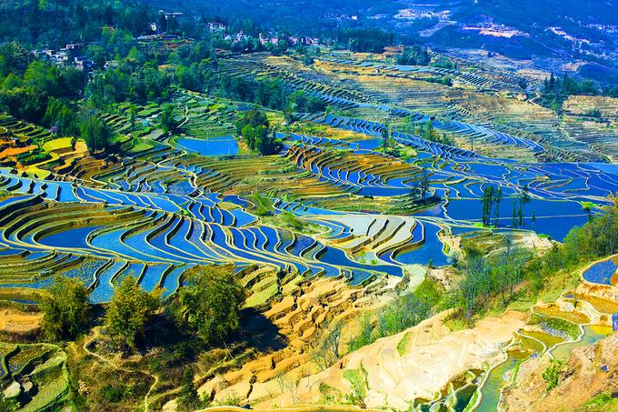 Lý do bạn nên đến Vân Nam một lần trong đời