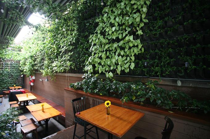 Quán cà phê với những mảng tường ngập lá xanh ở Sài Gòn