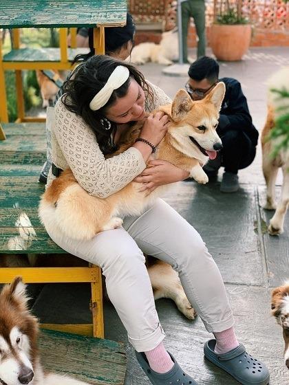 Black Rock Garden (Pets Garden Shop):Đây là một trong những điểm đến mới cho người yêu thú cưng tại Đà Lạt. Nằm ở một con dốc cao trên đường Lương Định Của, nơi đây được yêu mếnkhách du lịch có thể thỏa thích vui chơi cùng các chú chóvới giá vé chỉ 70.000 đồng mộtngười. Bạn có thể ôm ấp, chụp ảnh cùngnhiều giống chónhư Husky, Alaska, Corgi, Golden...với sự giám sát của nhân viên.Ảnh: Black Rock Garden.