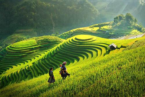 CNN giới thiệu Sa Pa là một thị trấn hiền hòa và mơ màng cách Hà Nội 5 giờ lái xe, nổi tiếng với ruộng bậc thang và văn hóa bản địa đặc sắc. Những năm gần đây, Sa Pa phát triển vượt bậc, trở thành một trong những điểm du lịch nóng nhất ở Việt Nam với nhiều khách sạn mới.