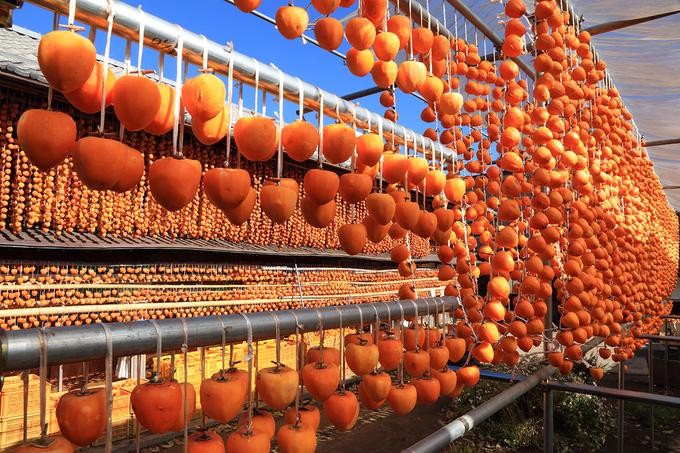 Những lễ hội mùa thu nổi tiếng Nhật Bản