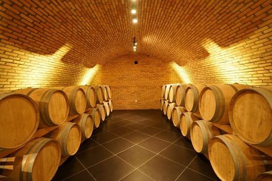 Hầm rượu vang lớn nhất Việt Nam - ảnh 1
