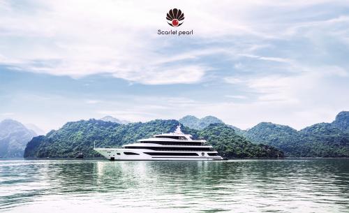 Phú Quang tổ chức đêm nhạc trên du thuyền Scarlet Pearl - ảnh 1