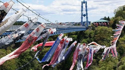 Hàng nghìn cá chép giấy được treo ở cây cầu. Ảnh: Living In Japan.