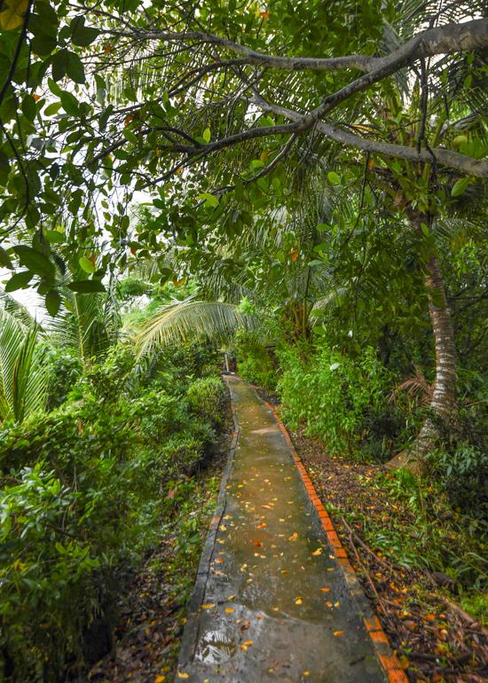 Hòn đảo nơi người dân tự thiết kế tour cho khách