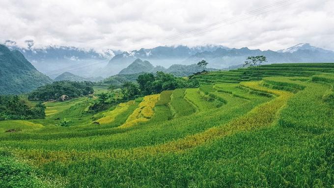 Pù Luông - Nơi mây đi ngang thung lũng lúa