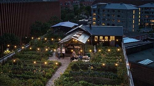 Nhà hàng nằm giữa khu vườn trên nóc nhà. Ảnh: Eatie.