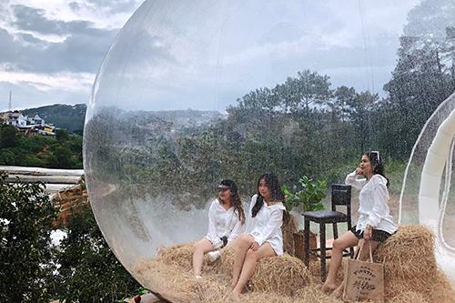 Trong vườn còn có tiểu cảnh bong bóng trong suốt giống như khách sạn bong bóng ở Bali. Ảnh: Vườn hồng nhà Tom.