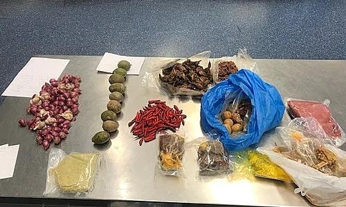 Vali của du khách trên chứa 4,5 kg thịt lợn và gần 0,5 kg trứng và thịt chim cút, pate, trái cây, tỏi và mực... Ảnh: Lực lượng Biên phòng Australia.