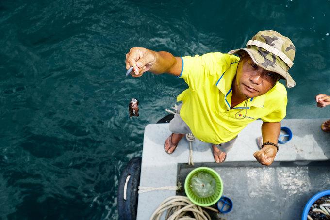 Câu cá, lặn biển ngắm san hô ở Phú Quốc