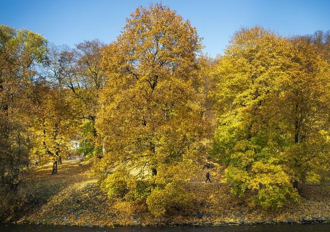 Cảnh đẹp mùa thu khắp thế giới