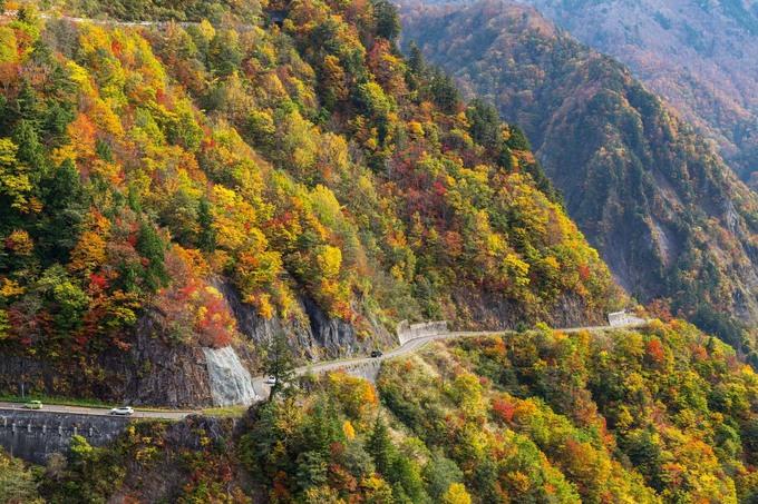 Cung đường mùa thu chỉ cho xe chạy ban ngày