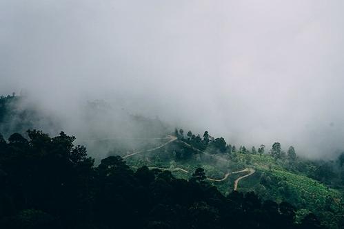 Những cung đường huyền ảo trong sương. Ảnh: Unsplash/Vitalii Tkachenko.