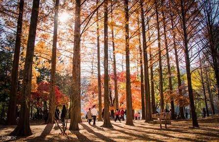 5 đất nước nên đến vào mùa du lịch cuối năm - ảnh 1