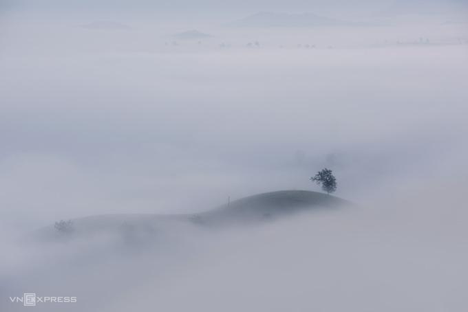 Sương vờn mây trên đồi chè Long Cốc