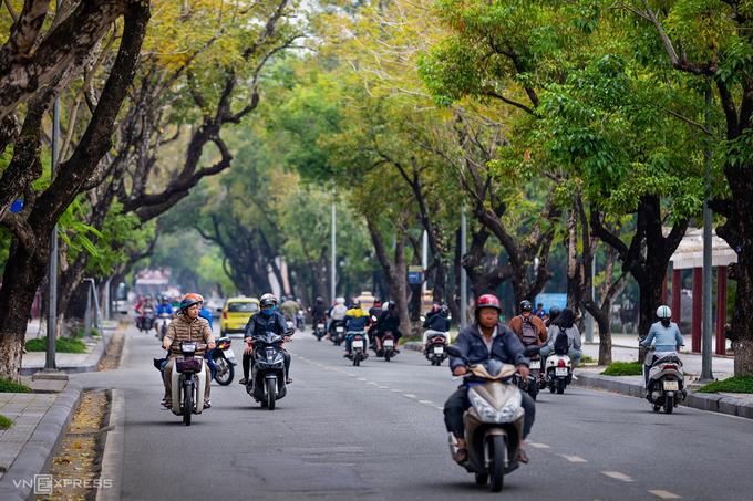 Mùa lá phượng bay cuối thu ở Huế