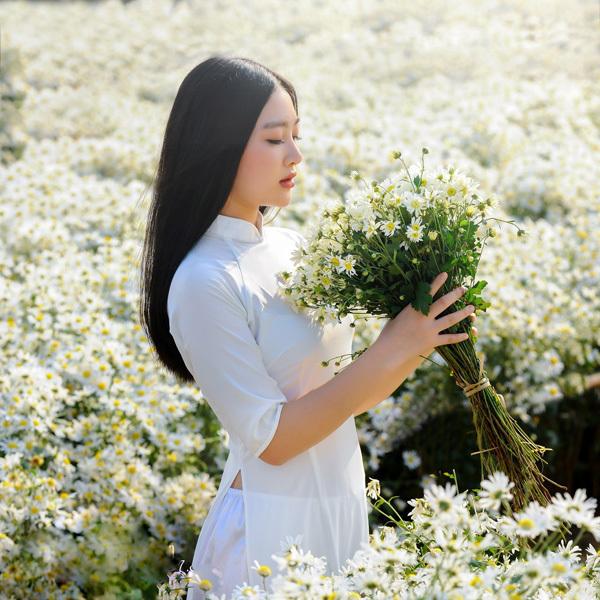 Áo dài trắng là một trong những loại trang phục được nhiều bạn trẻ lựa chọn khi chụp ảnh cùng cúc họa mi, bởi sự duyên dáng mà tà áo dài này mang lại.