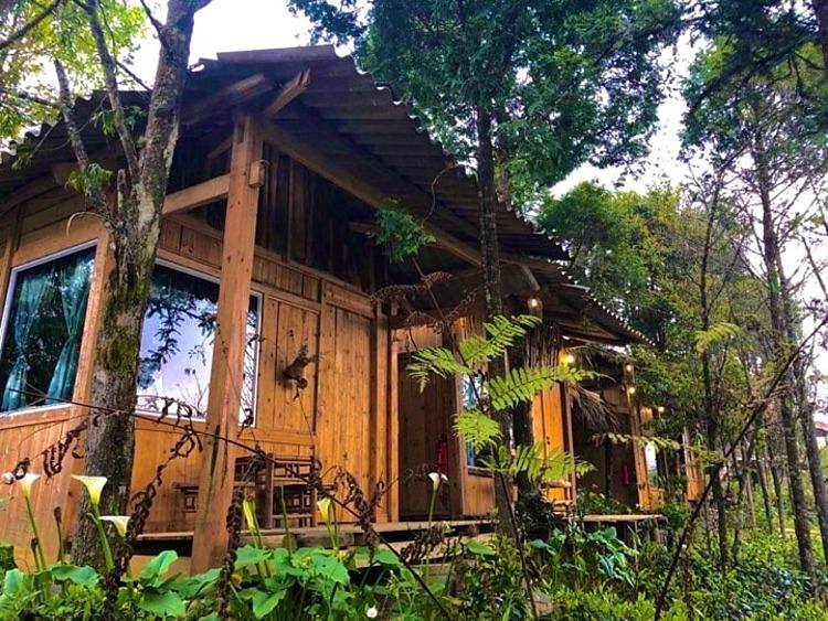 Những homestay đẹp tại Sapa