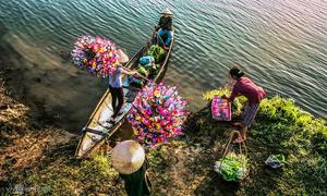 Những cánh hoa giấy sắc màu ở làng Thanh Tiên
