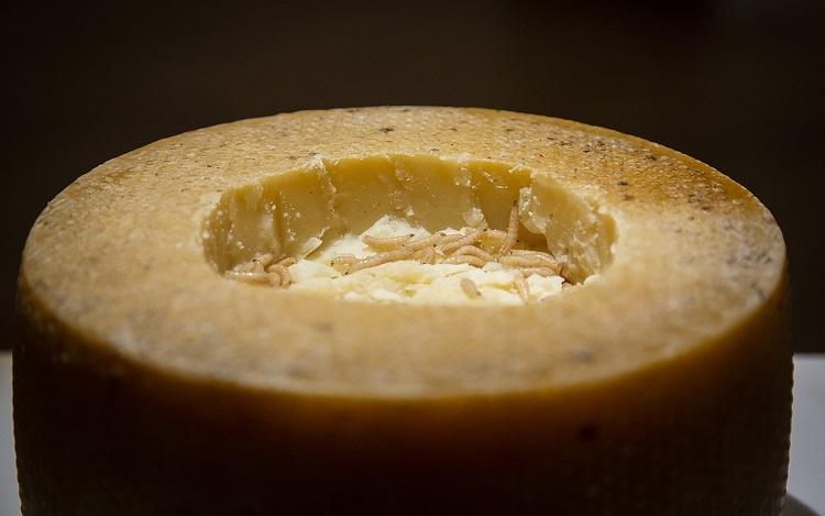 Pho mát giòi Casu marzuMón phô mai sữa cừu đến từ hòn đảo Sardinia, Italy còn có tên gọi là pho mát thối. Sau khi làm nóng và đóng khuôn, pho mát sẽ được cắt để ruồi đen xâm nhập và đẻ trứng. Món ăn có mùi hăng nồng, vị cay và đắng. Casu mazu được kỷ lục Guinness ghi nhận là loại pho mát nguy hiểm nhất thế giới. Ảnh: Mo Styles.