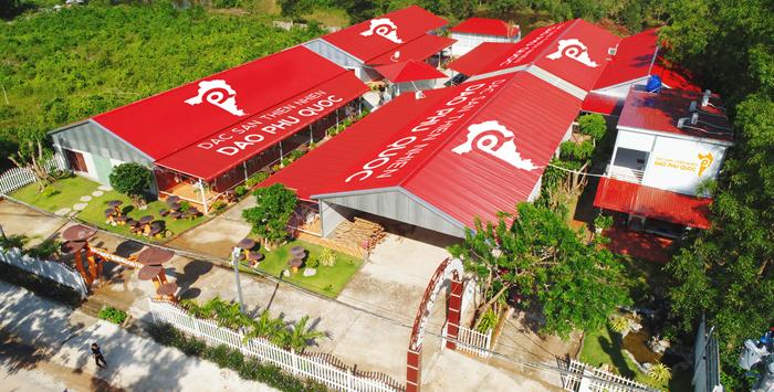 Trang  - image001-9348-1581319549 - Khu du lịch nuôi trồng nấm mối đen ở Phú Quốc
