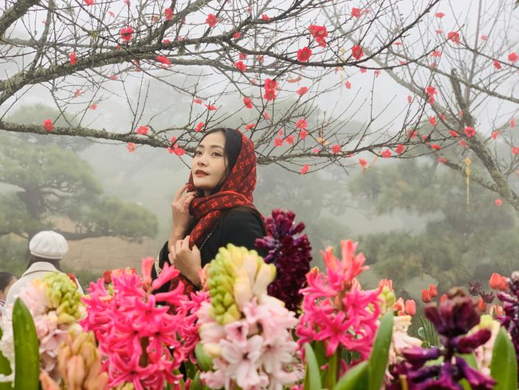 Đến Fansipan thưởng hoa, lễ Phật - ảnh 1