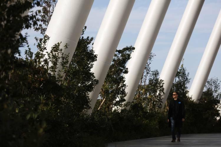 Sân vận động làm từ 2.000 m3 gỗ - ảnh 4