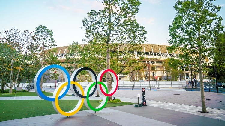 Sân vận động làm từ 2.000 m3 gỗ - ảnh 2