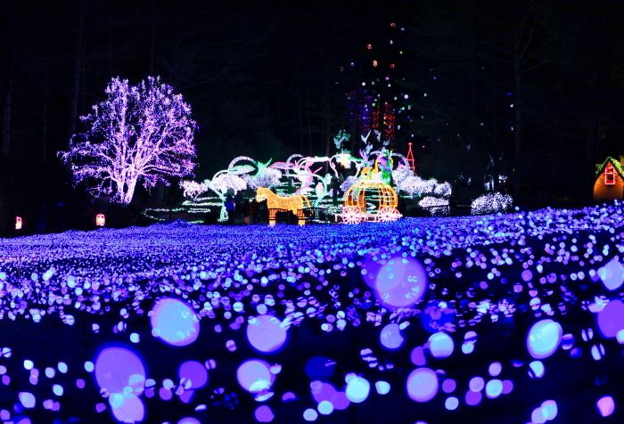 Vườn Morning CalmMorning Calm là nơi tổ chức lễ hội ánh sáng lớn nhất trên cả nước. Đây là lễ hội được tổ chức thường niên vào mùa đông. Khi mặt trời lặn, vườn Morning Calm sẽ được thắp sáng bởi hơn 30.000 ánh đèn tại các khu vườn chính là vườn Hakyung, vườn quê hương, vườn cây cảnh, vườn ánh trăng, đường dẫn trên bầu trời và vườn địa đàng. Đến xứ sở kim chi vào mùa đông, bạn nên ghé thăm khu vườn để tham gia lễ hội ánh sáng, một trong những hoạt động vui chơi về đêm ở Seoul. Ảnh: Visit Korea.